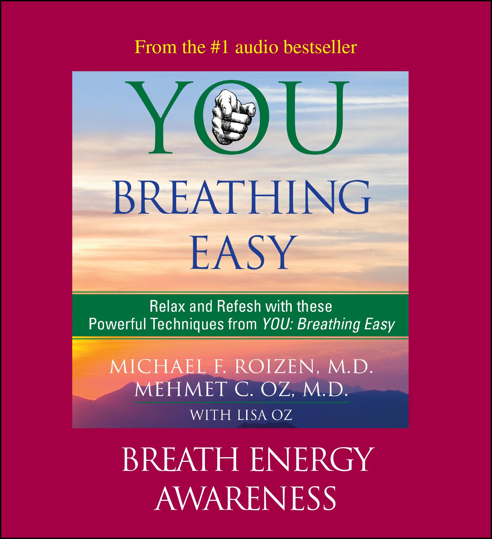 You: Breathing Easy: Breath Energy Awareness Audiobook by