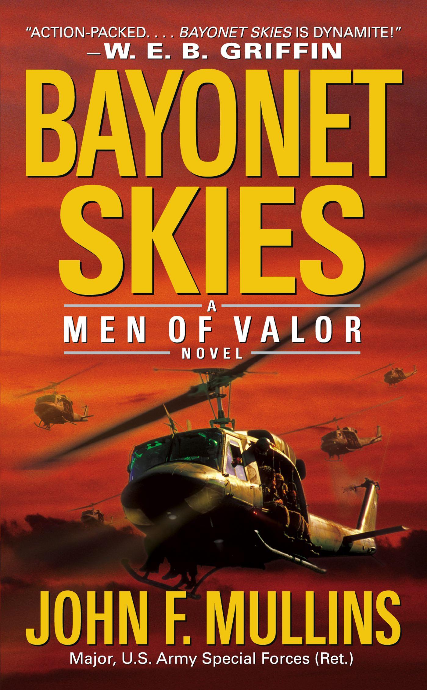 Book Cover Image (jpg): Bayonet Skies