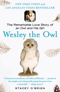 Wesley the Owl