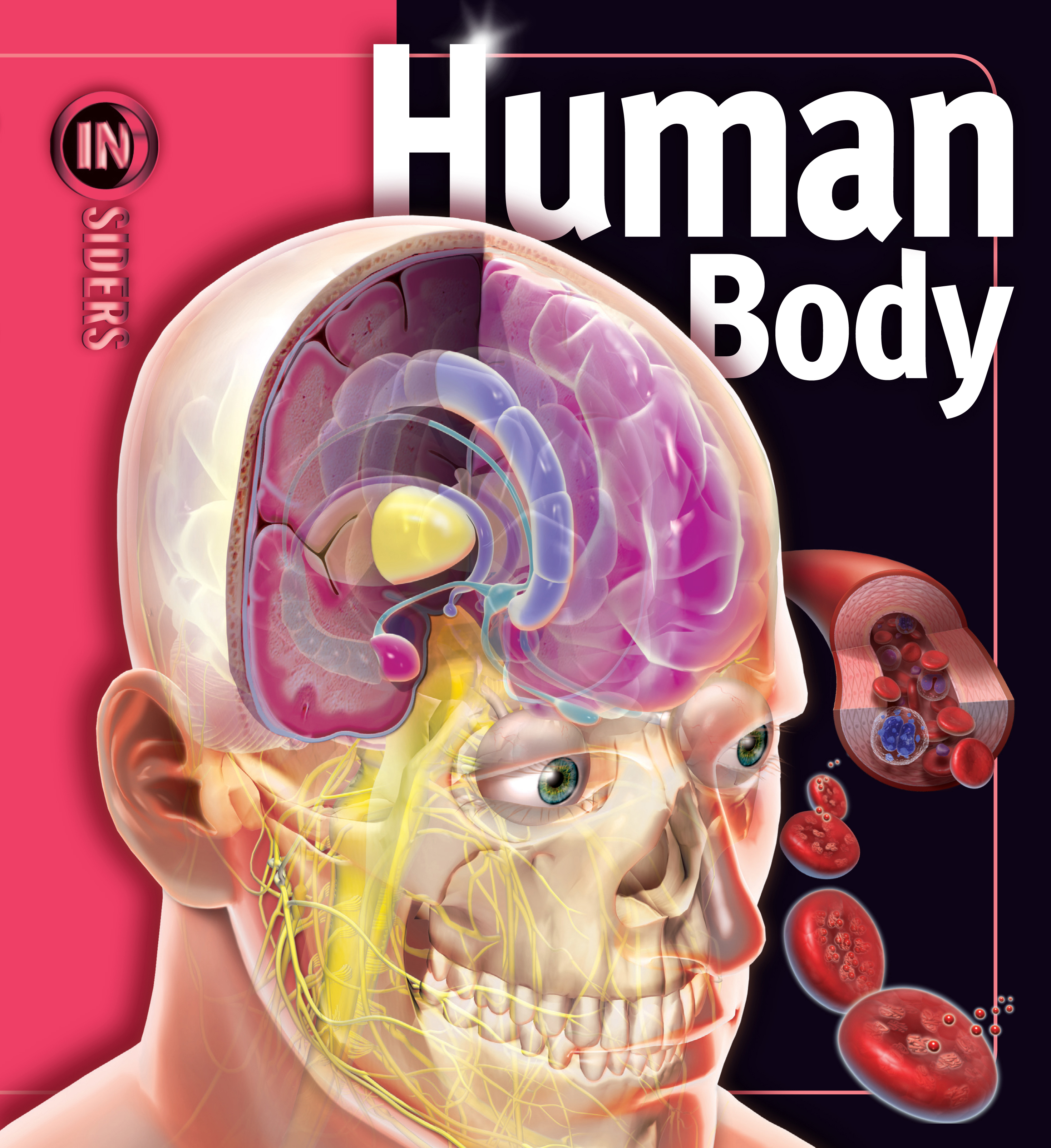 Human Body Book By Linda Calabresi Official Publisher Page