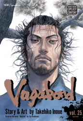 Vagabond, Vol. 25
