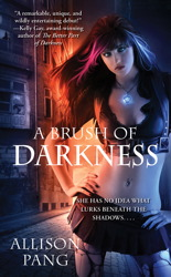 A Brush of Darkness book cover