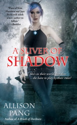 Sliver of Shadow book cover