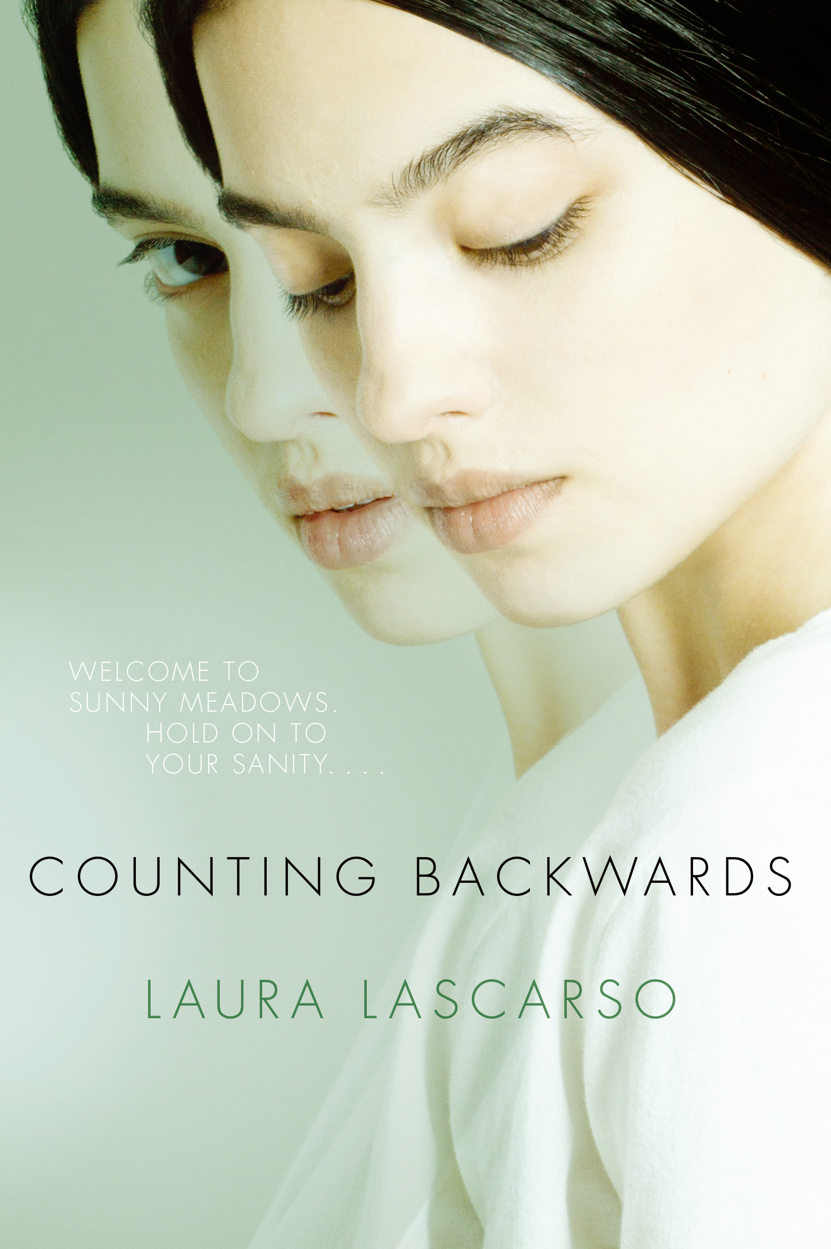 Read Counting Backwards By Laura Lascarso