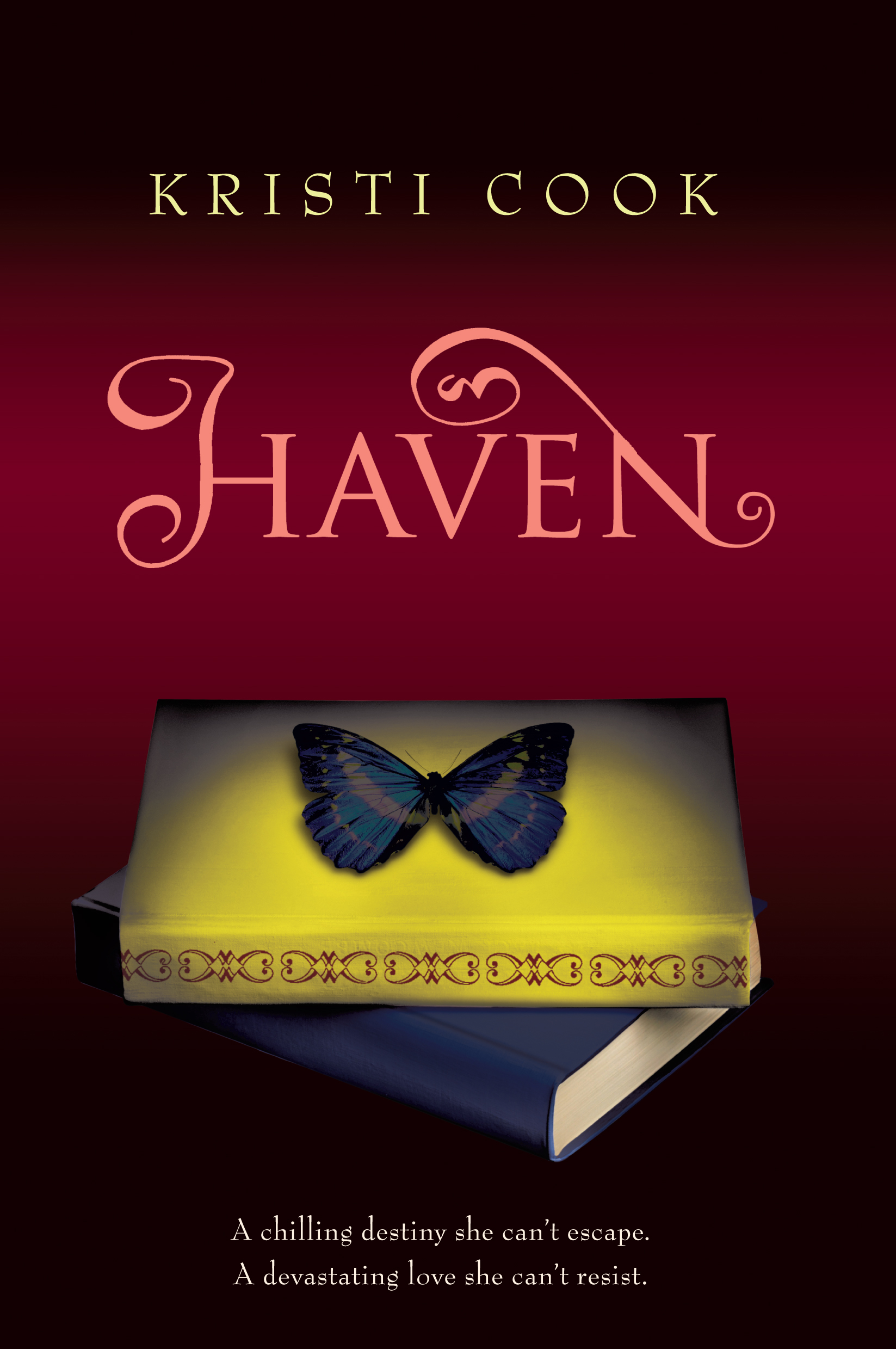 Book Cover Image (jpg): Haven