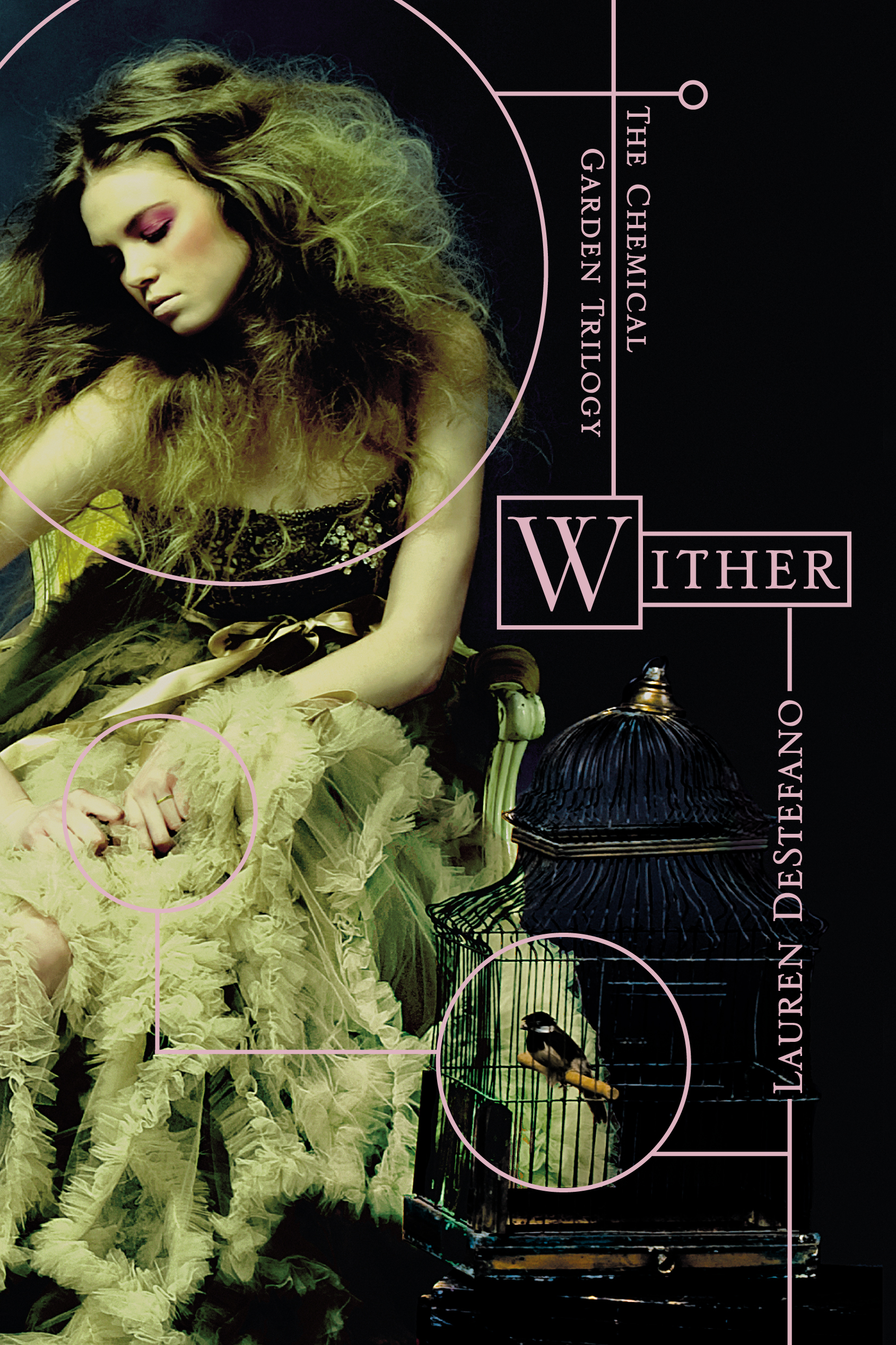 Image result for wither book