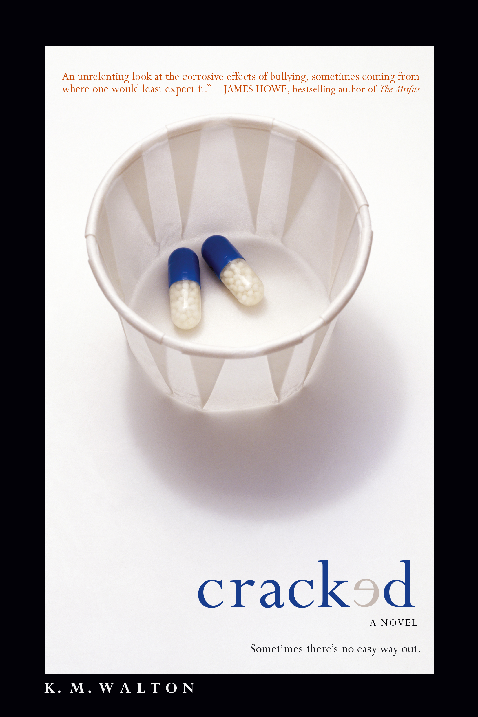 Image result for cracked book