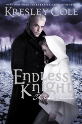 Endless Knight book cover