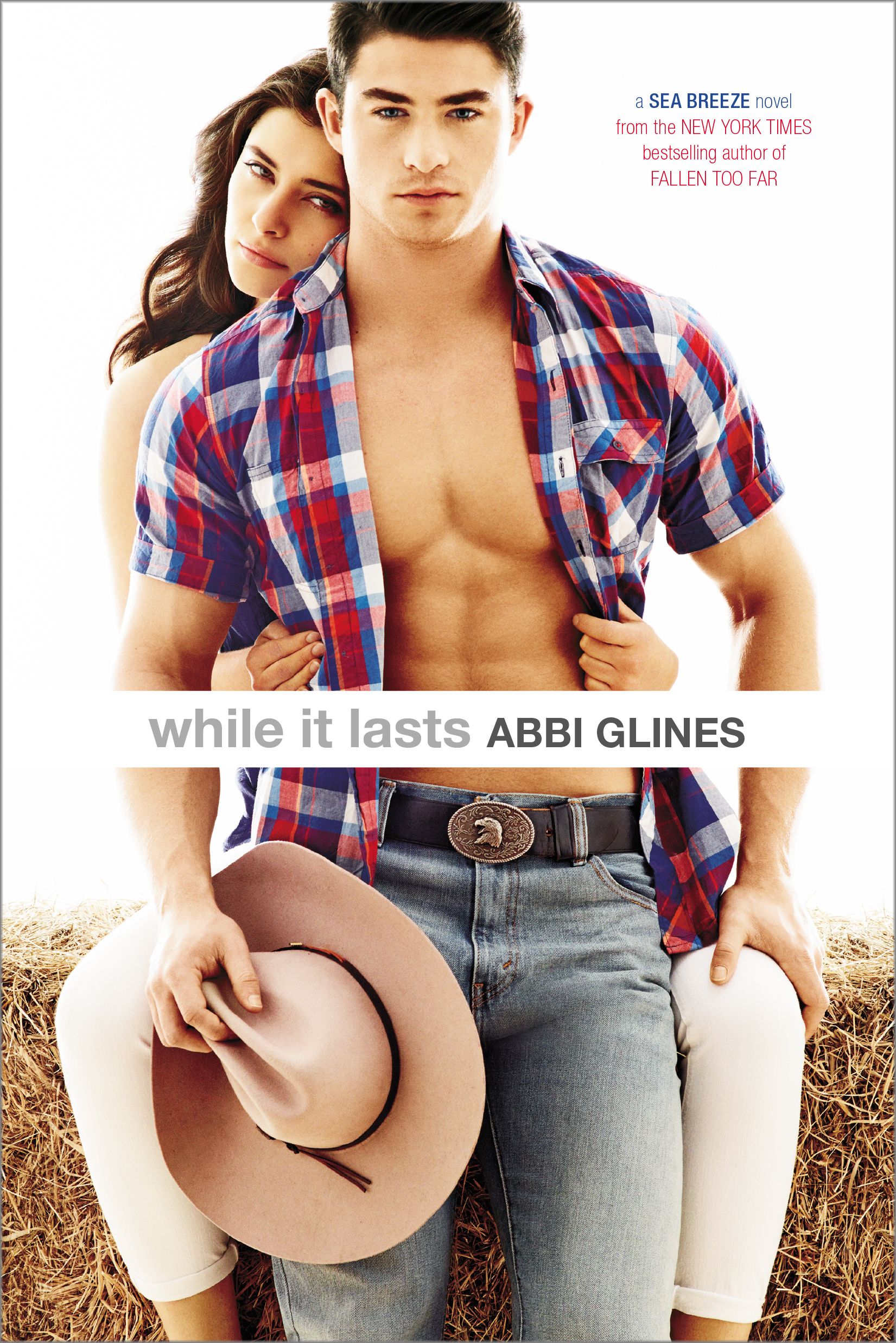 Image result for while it lasts abbi glines