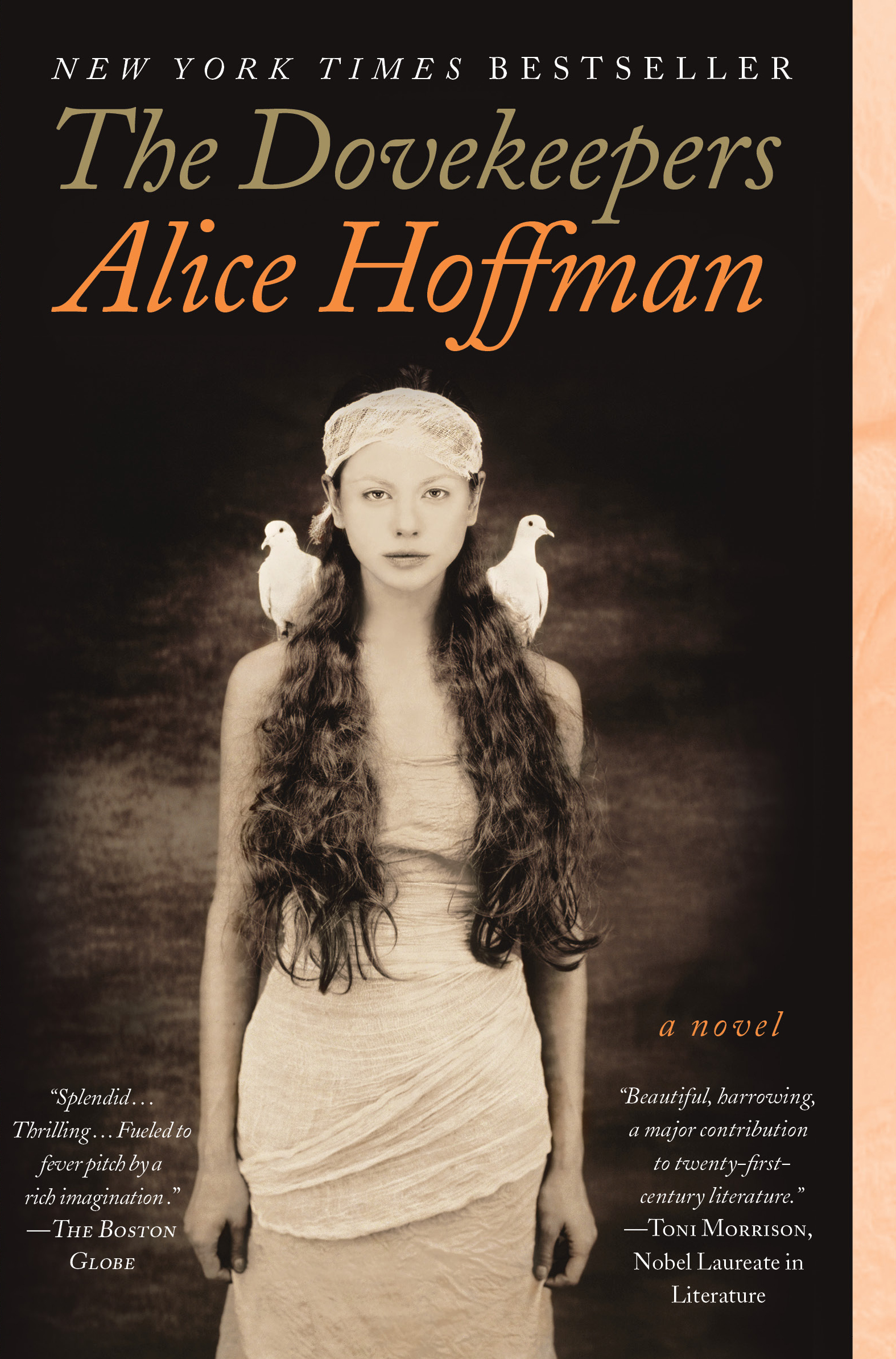 The Dovekeepers | Book by Alice Hoffman | Official Publisher