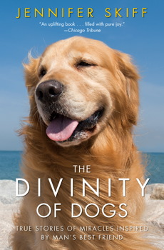 Buy The Divinity of Dogs: True Stories of Miracles Inspired by Man's Best Friend