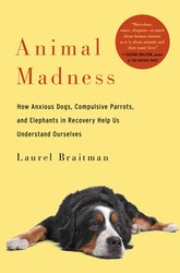Buy Animal Madness: How Anxious Dogs, Compulsive Parrots, and Elephants in Recovery Help Us Understand Ourselves