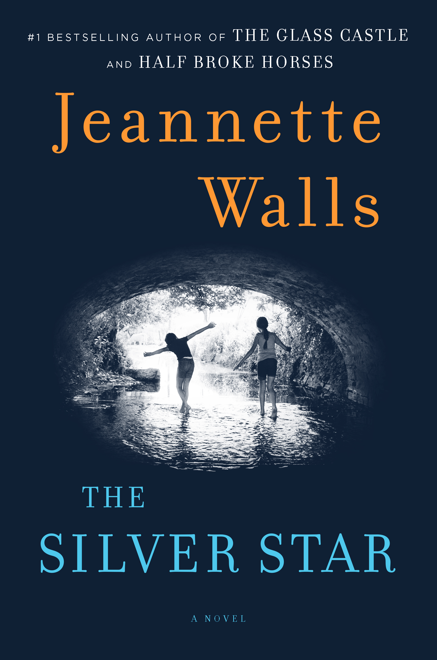 Book Cover Image (jpg): The Silver Star