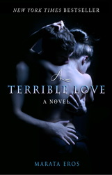 A Terrible Love book cover