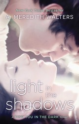 Light in the Shadows book cover