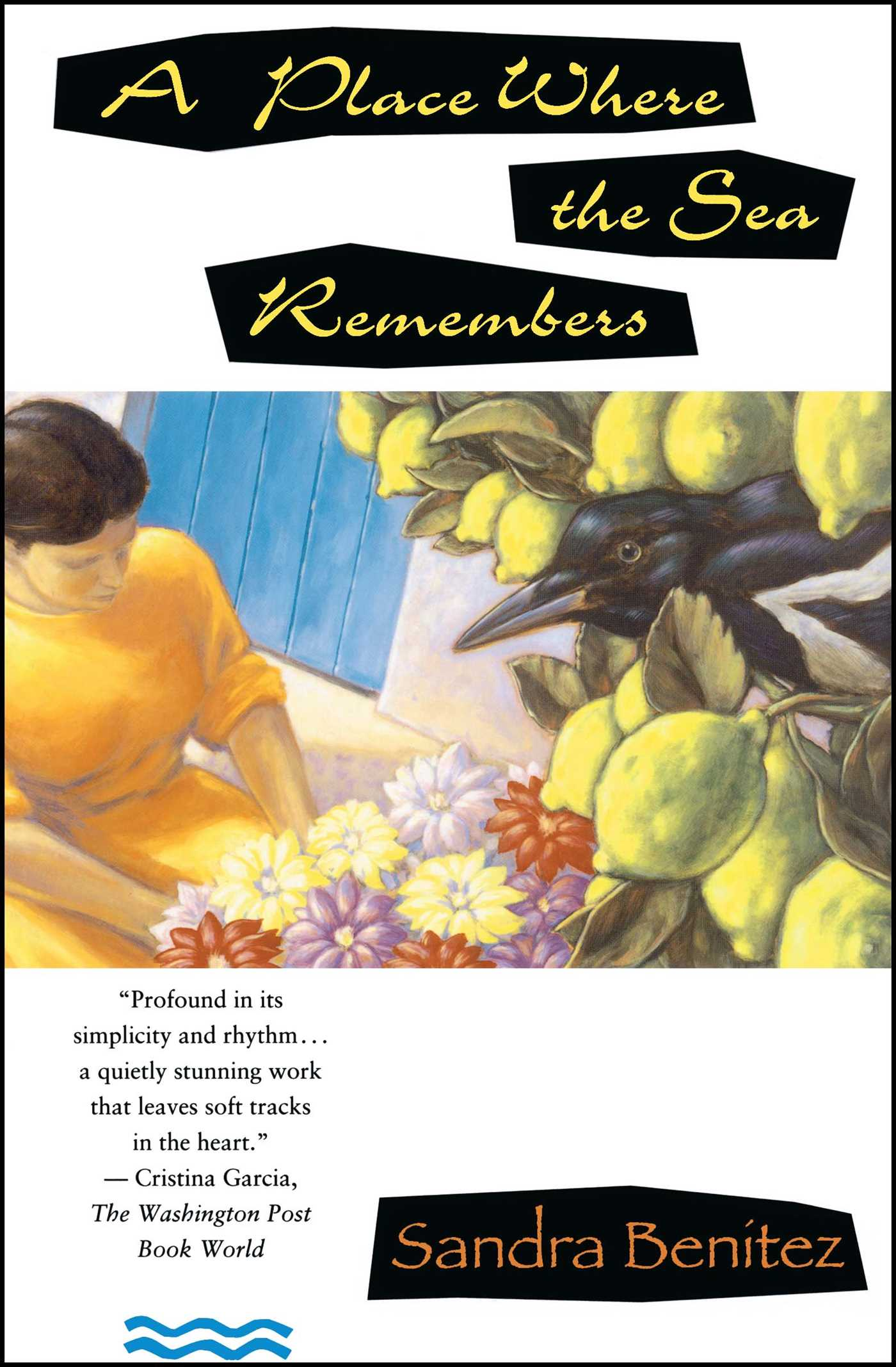 Place Where the Sea Remembers | Book by Sandra Benitez ...