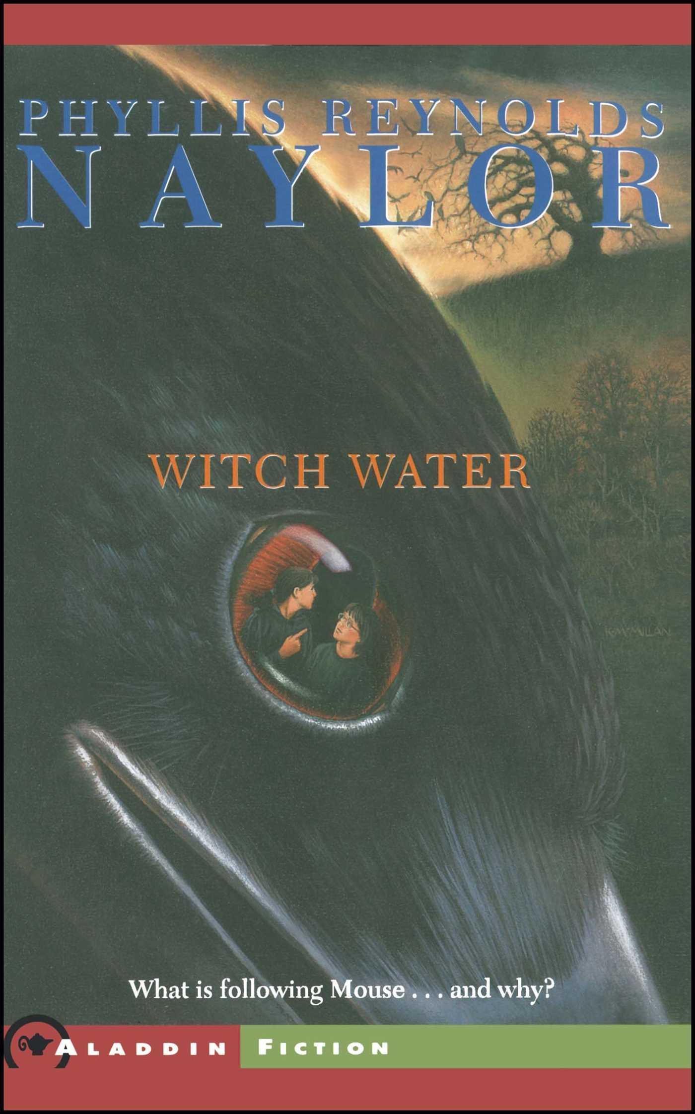 Witch water 9780689853166 hr