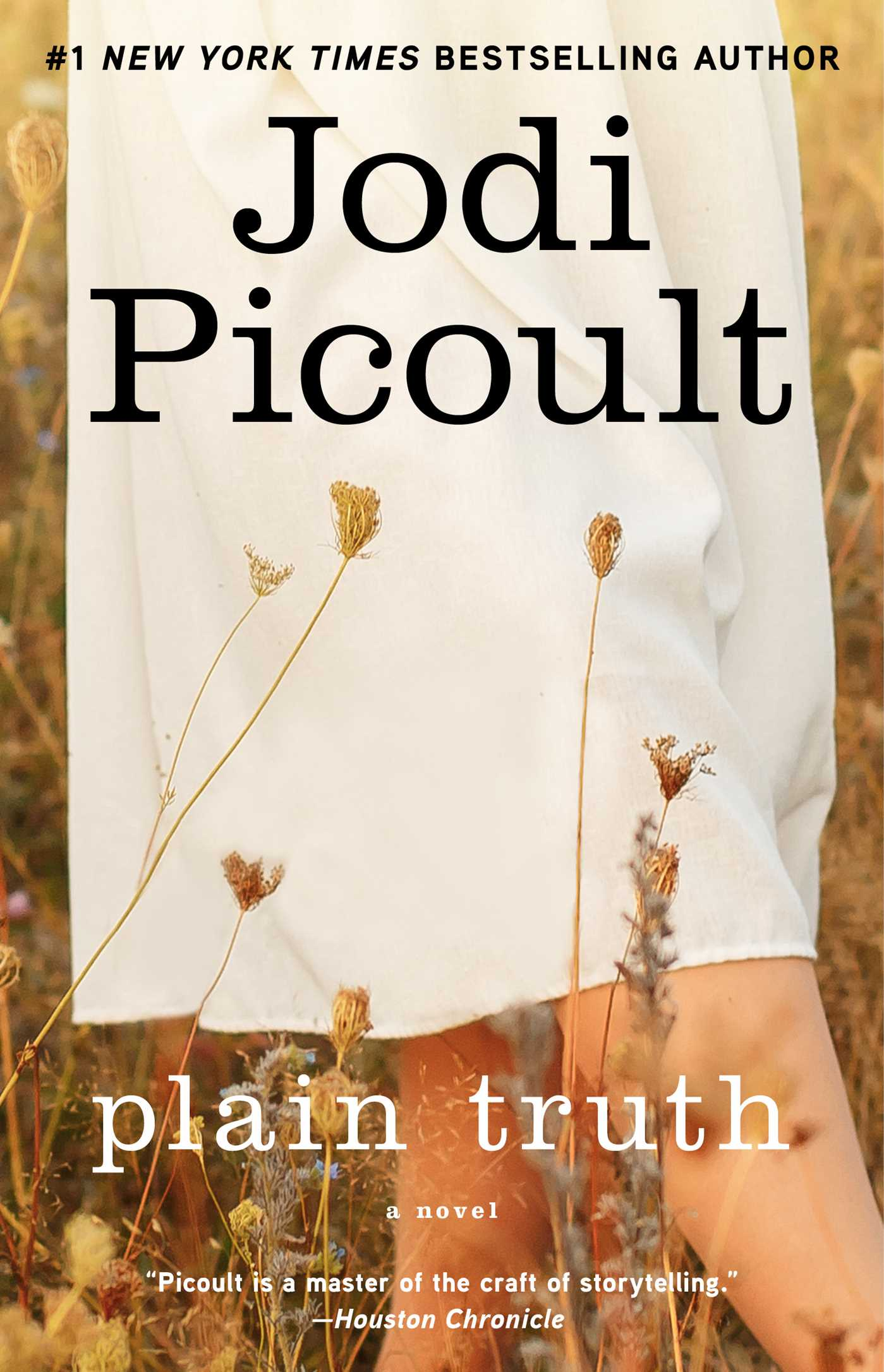 Plain Truth eBook by Jodi Picoult | Official Publisher Page | Simon