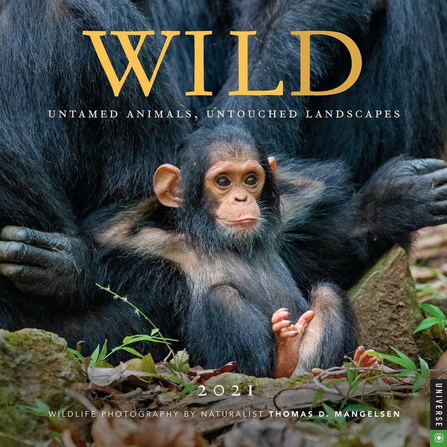 Wild (2021)