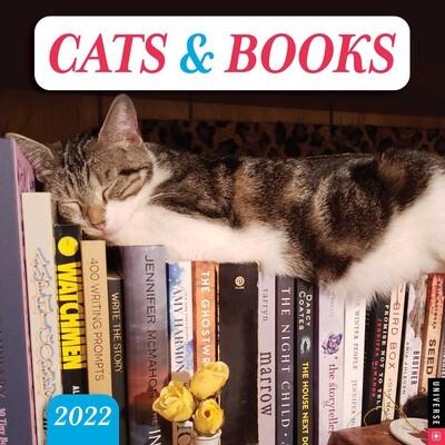 Calendar Books 2022.Cats Books 2022 Wall Calendar Book Summary Video Official Publisher Page Simon Schuster