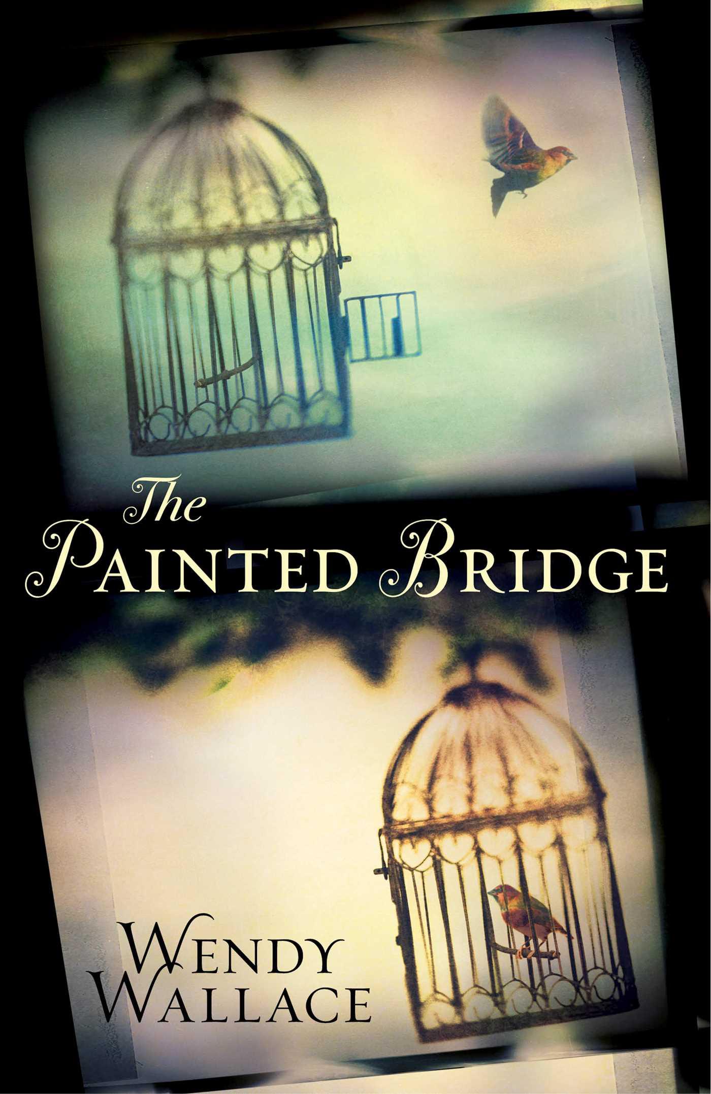 The painted bridge 9780857209306 hr