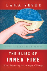 The Bliss of Inner Fire