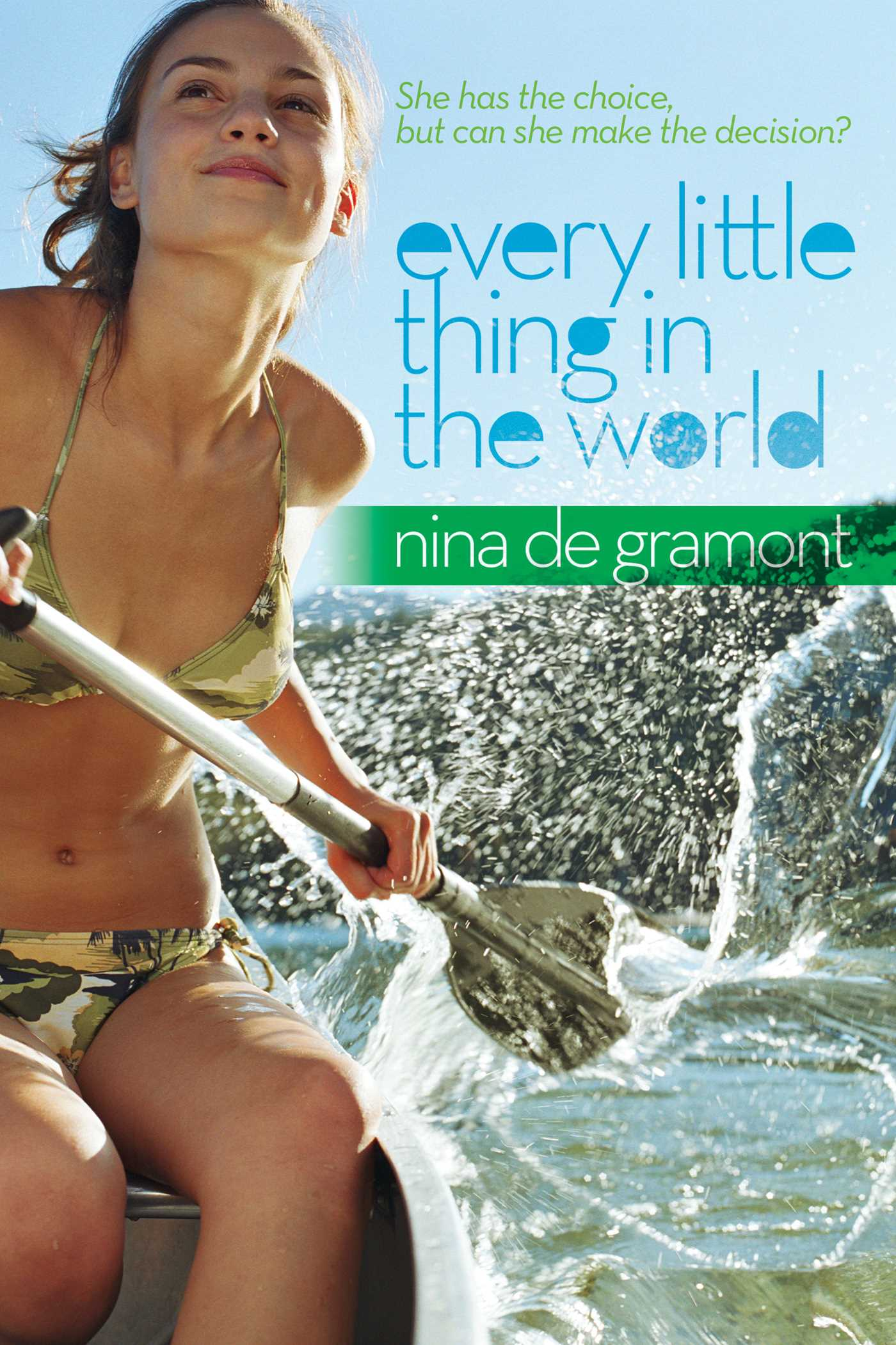 Every little thing in the world 9781416982807 hr