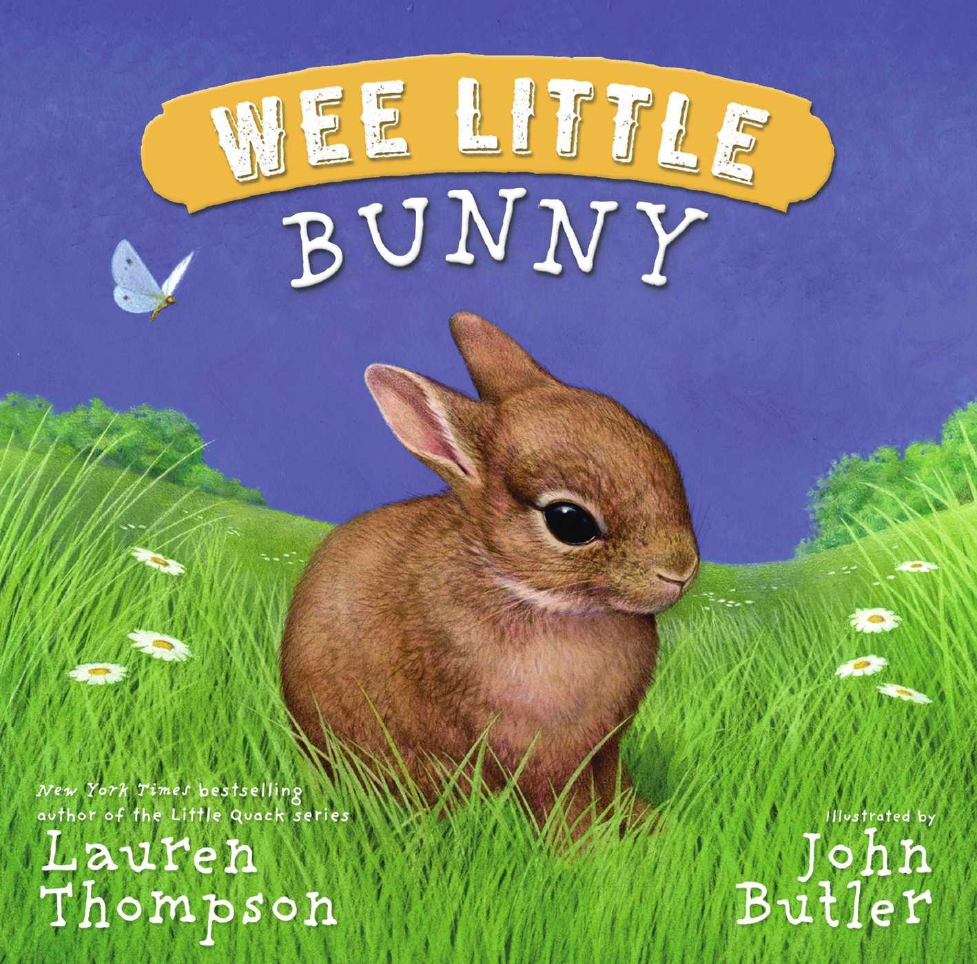 Wee little bunny 9781416982845 hr
