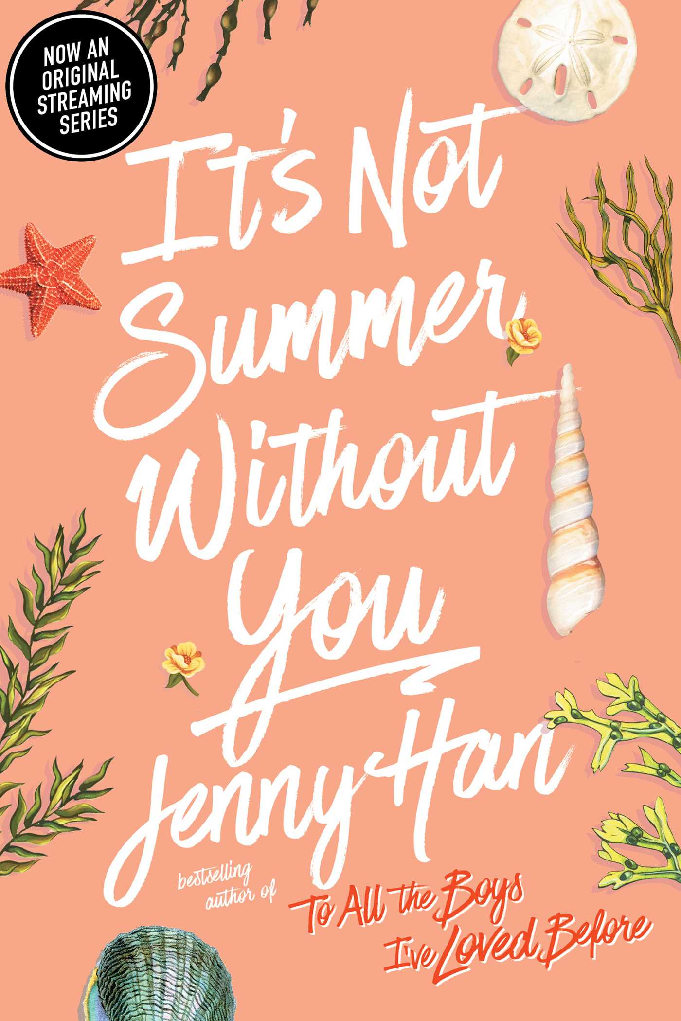 Its not summer without you 9781416995562 hr
