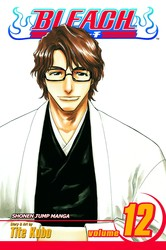 Bleach, Vol. 12