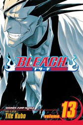Bleach, Vol. 13