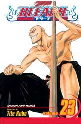 Bleach, Vol. 23