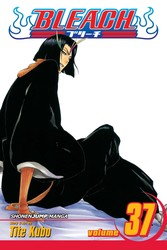 Bleach, Vol. 37