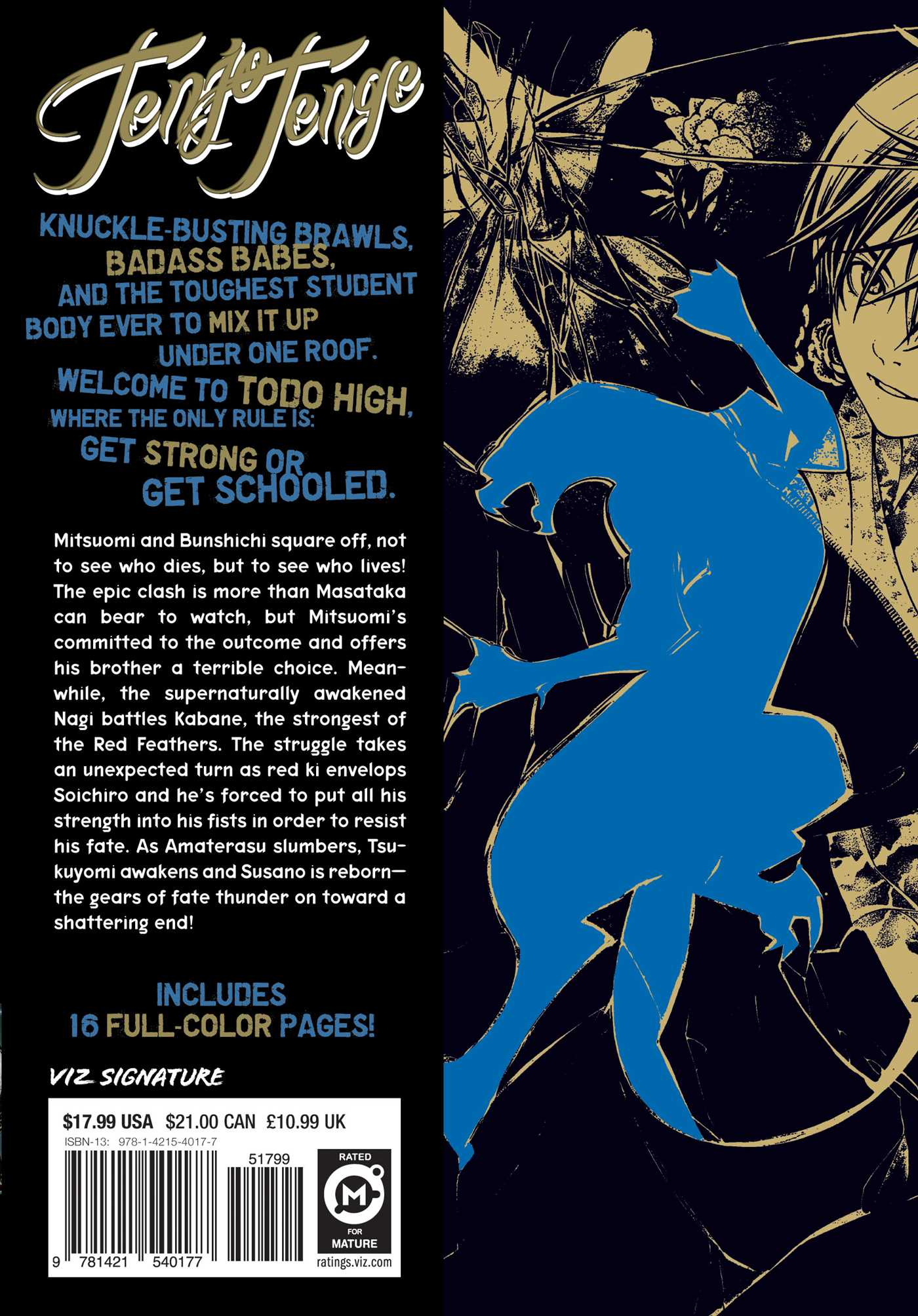 Tenjo tenge vol 10 9781421540177 hr back