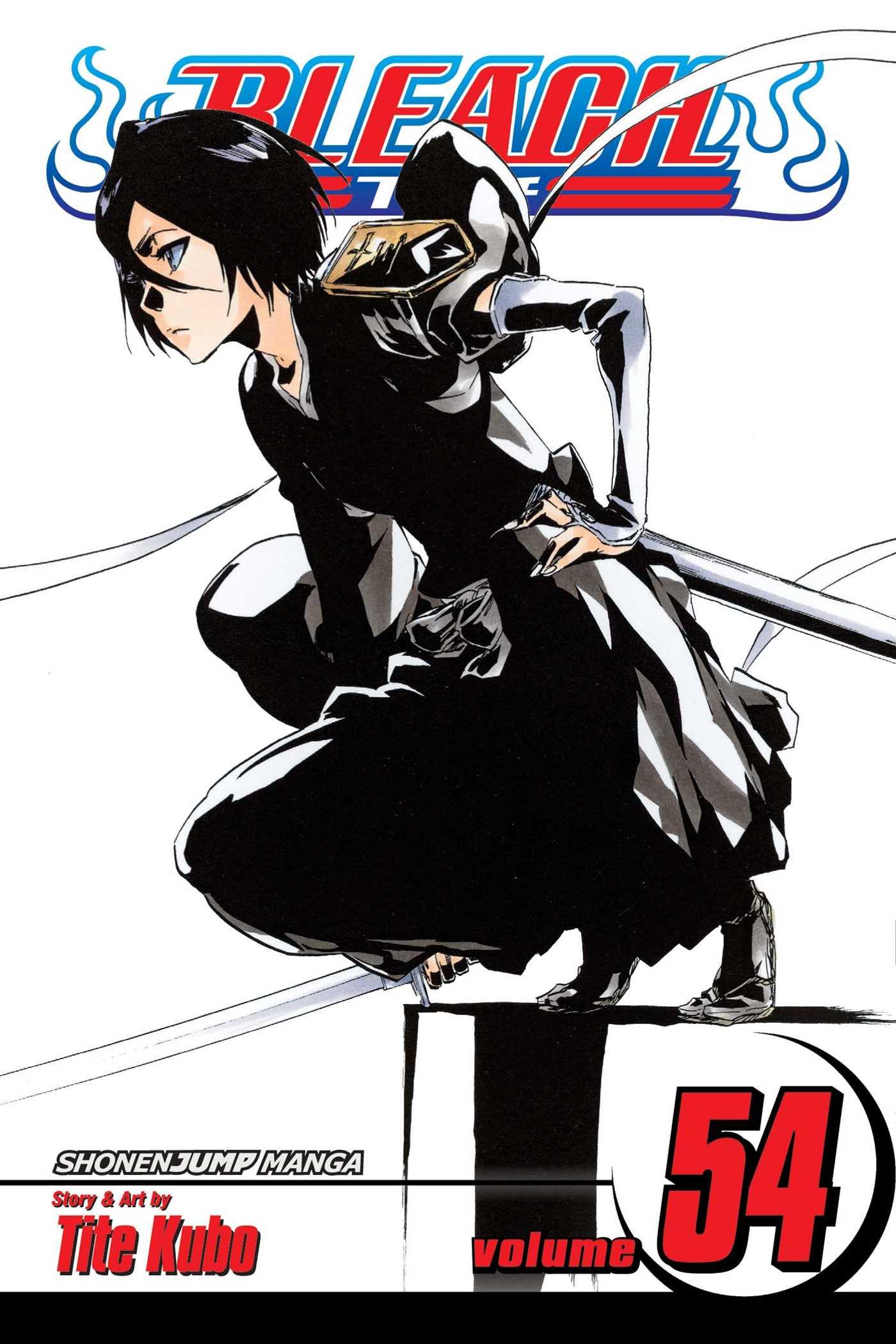 bleach manga volume 1 free download