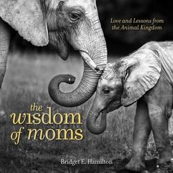 The Wisdom of Moms