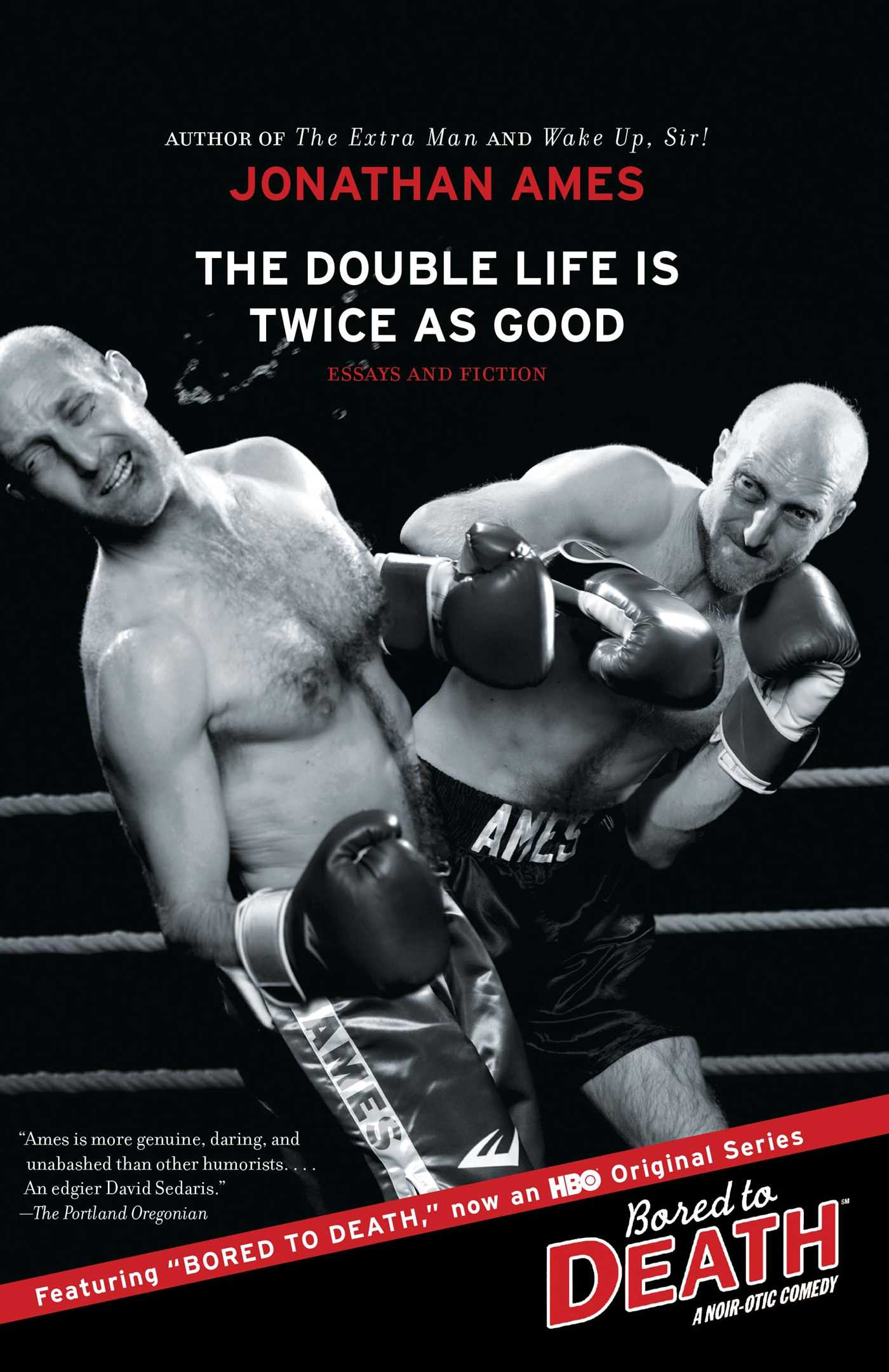 the double life is twice as good book by jonathan ames essays and fiction