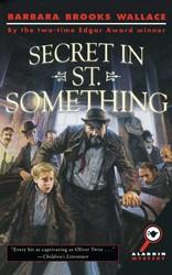 Secret in st something 9781439134689