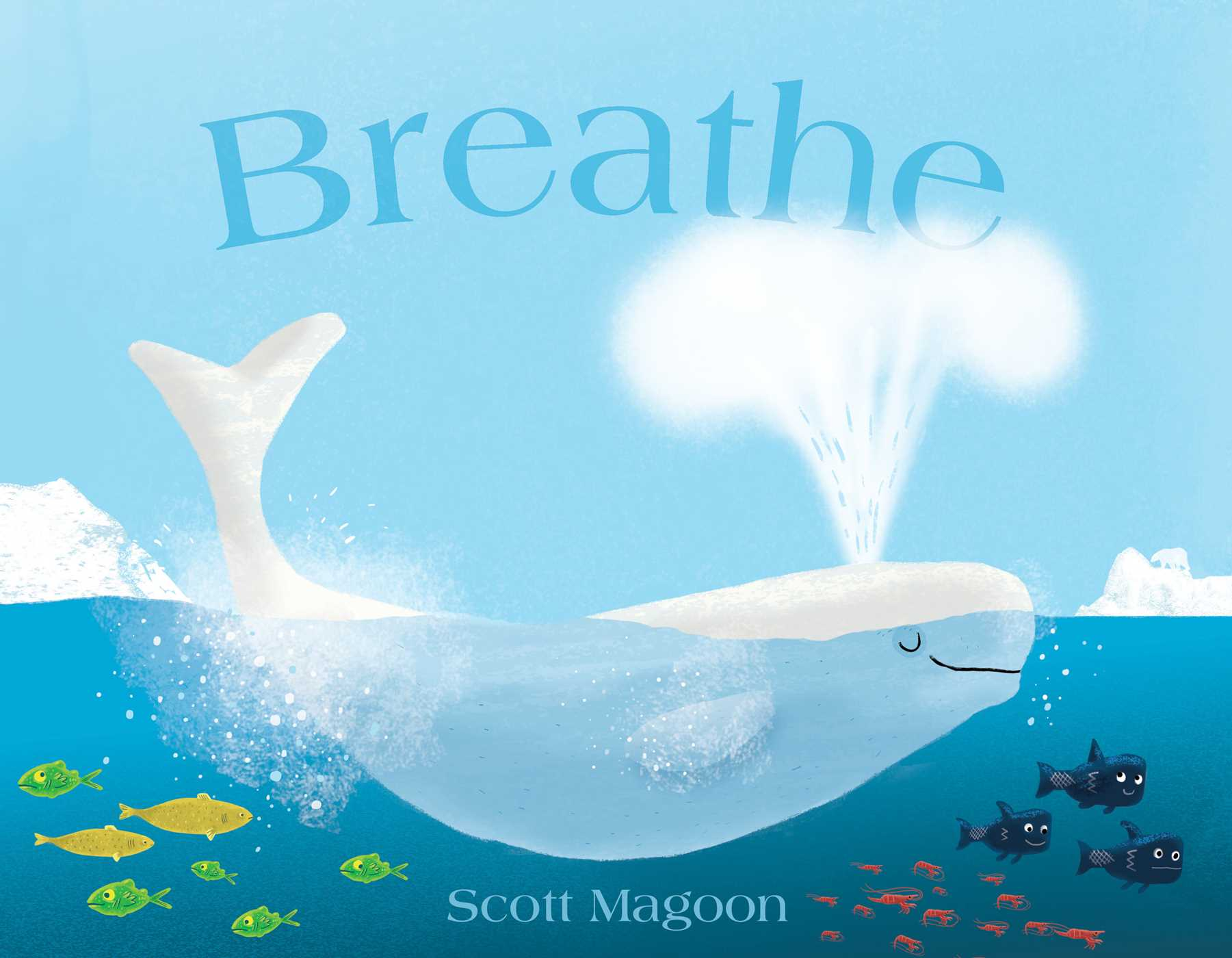 Breathe 9781442412583 hr