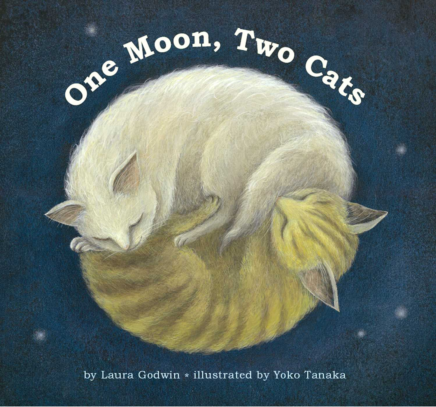 One moon two cats 9781442434912 hr