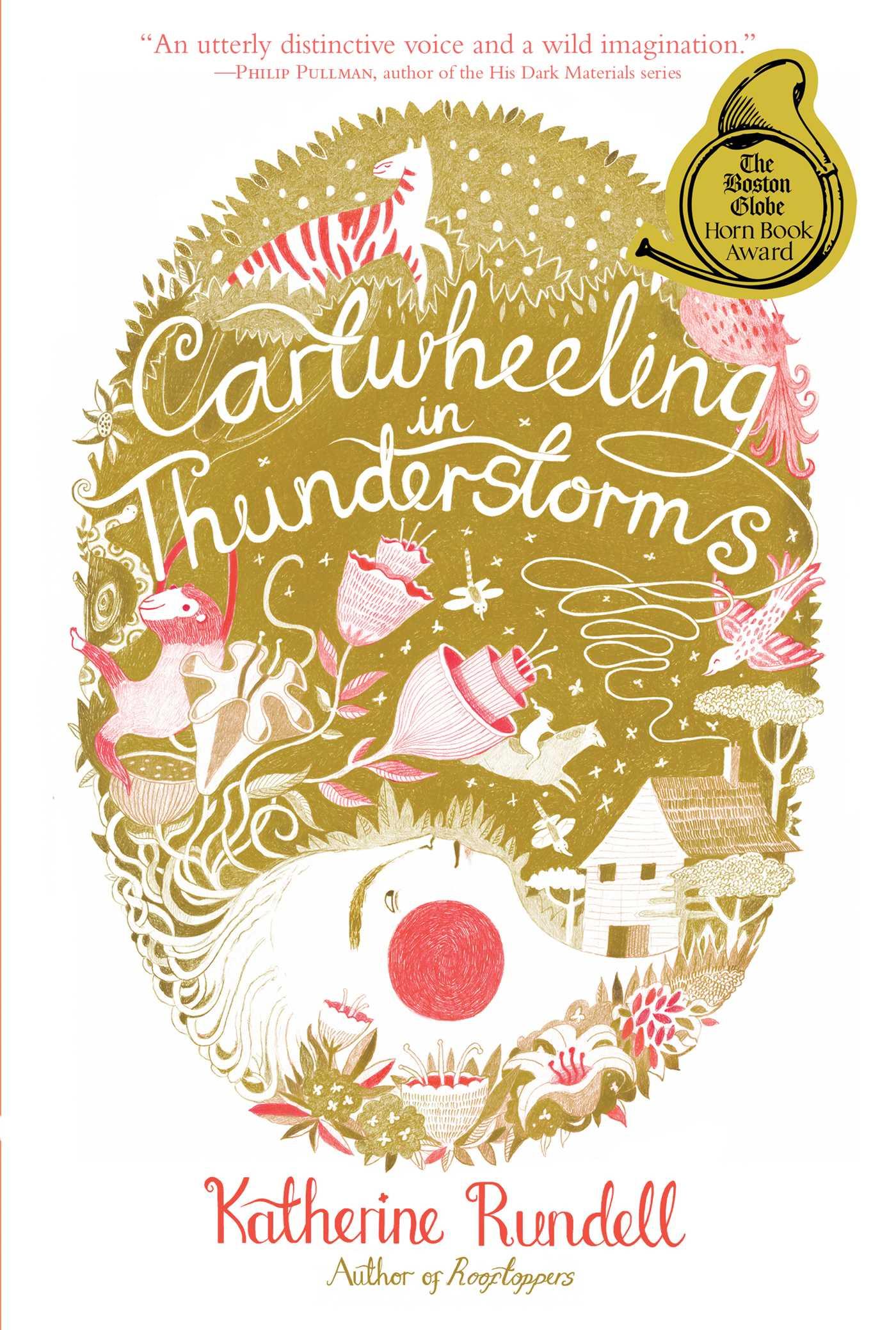 Cartwheeling in thunderstorms 9781442490628 hr