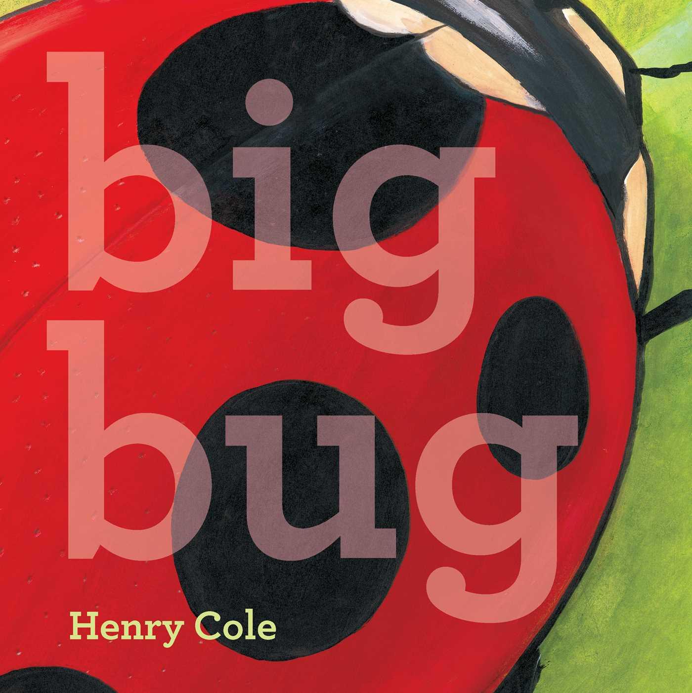 Big bug 9781442498976 hr