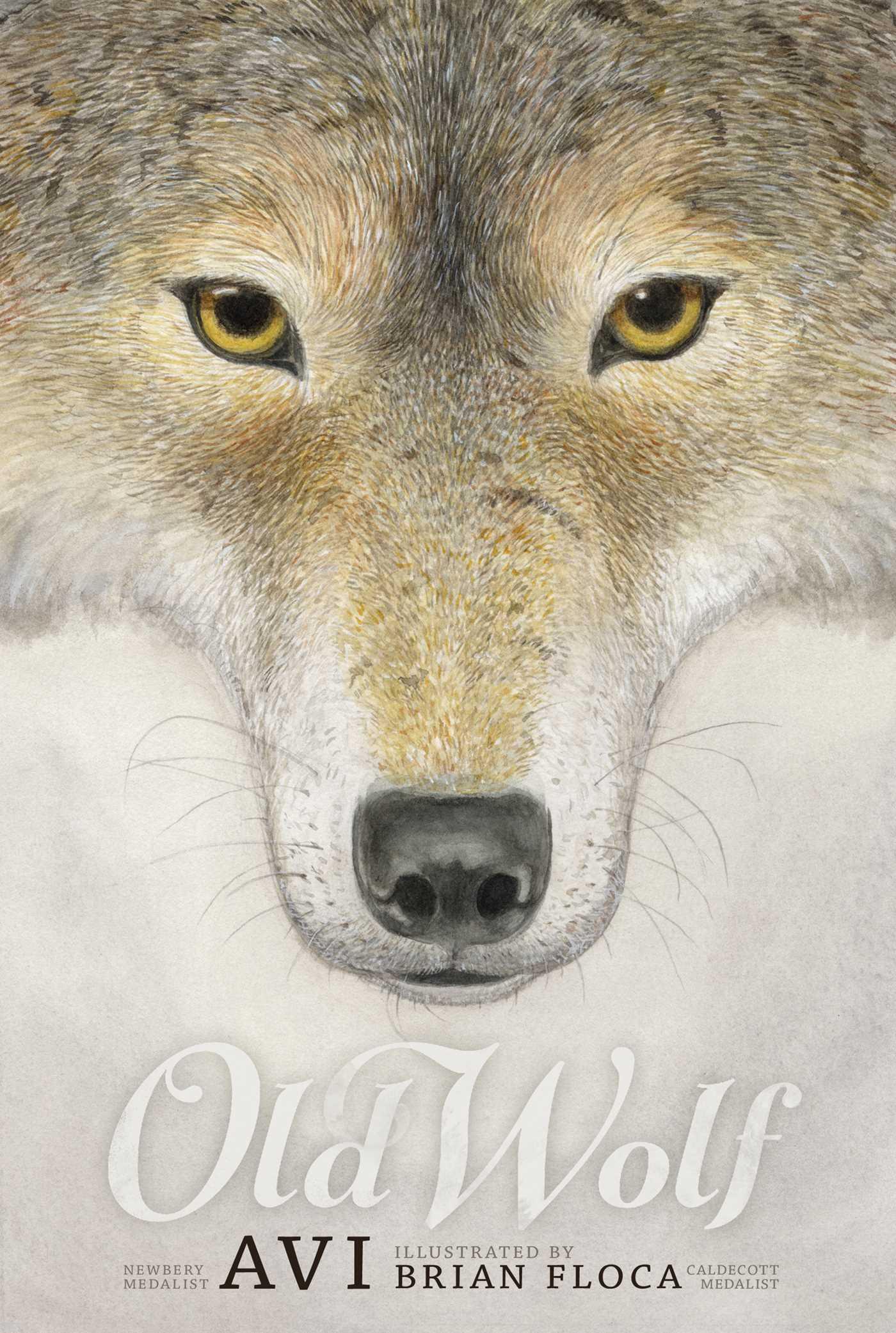 Old wolf 9781442499225 hr