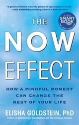 The now effect 9781451623895