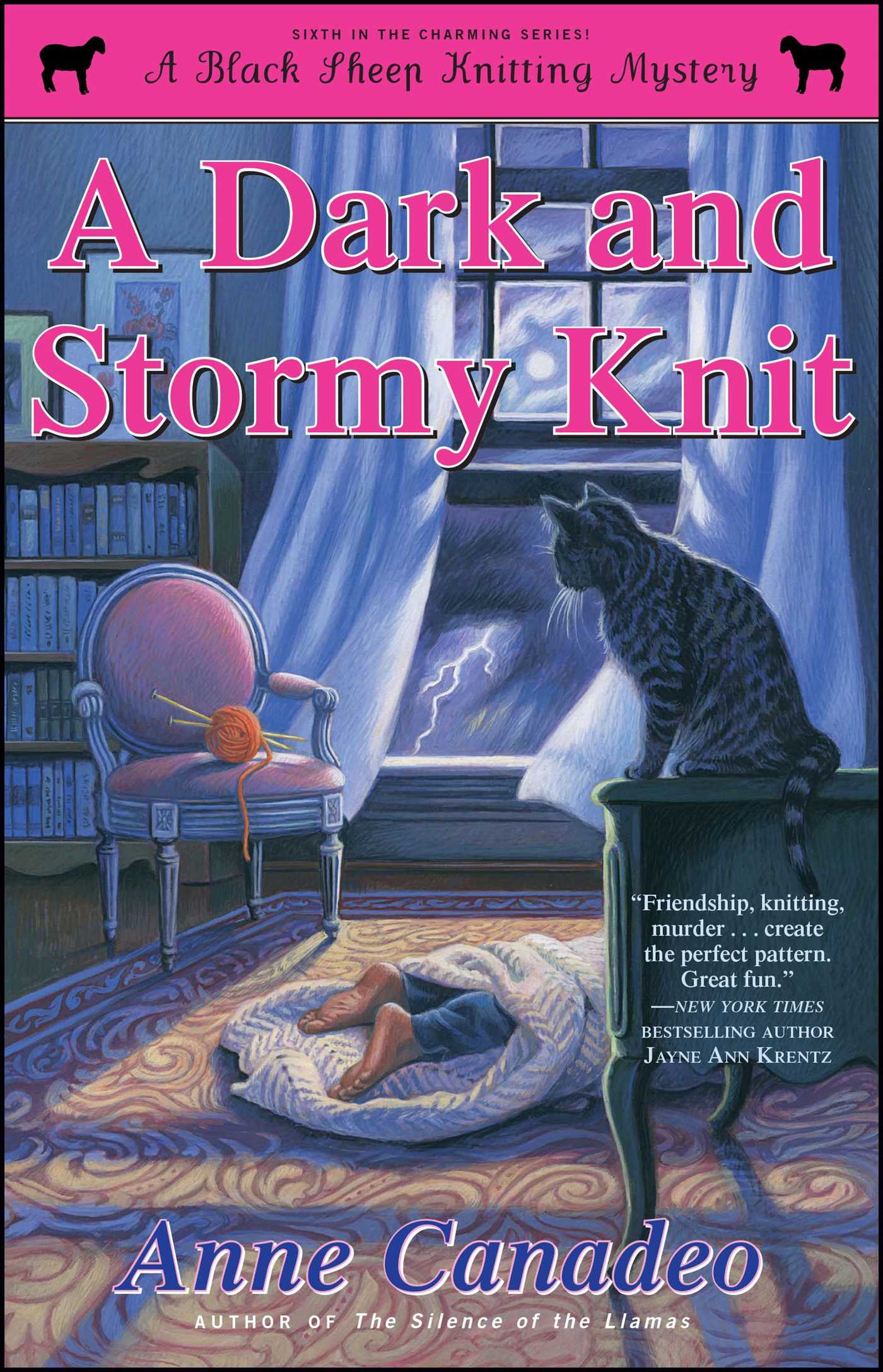 A Dark And Stormy Knit Book By Anne Canadeo Official Publisher