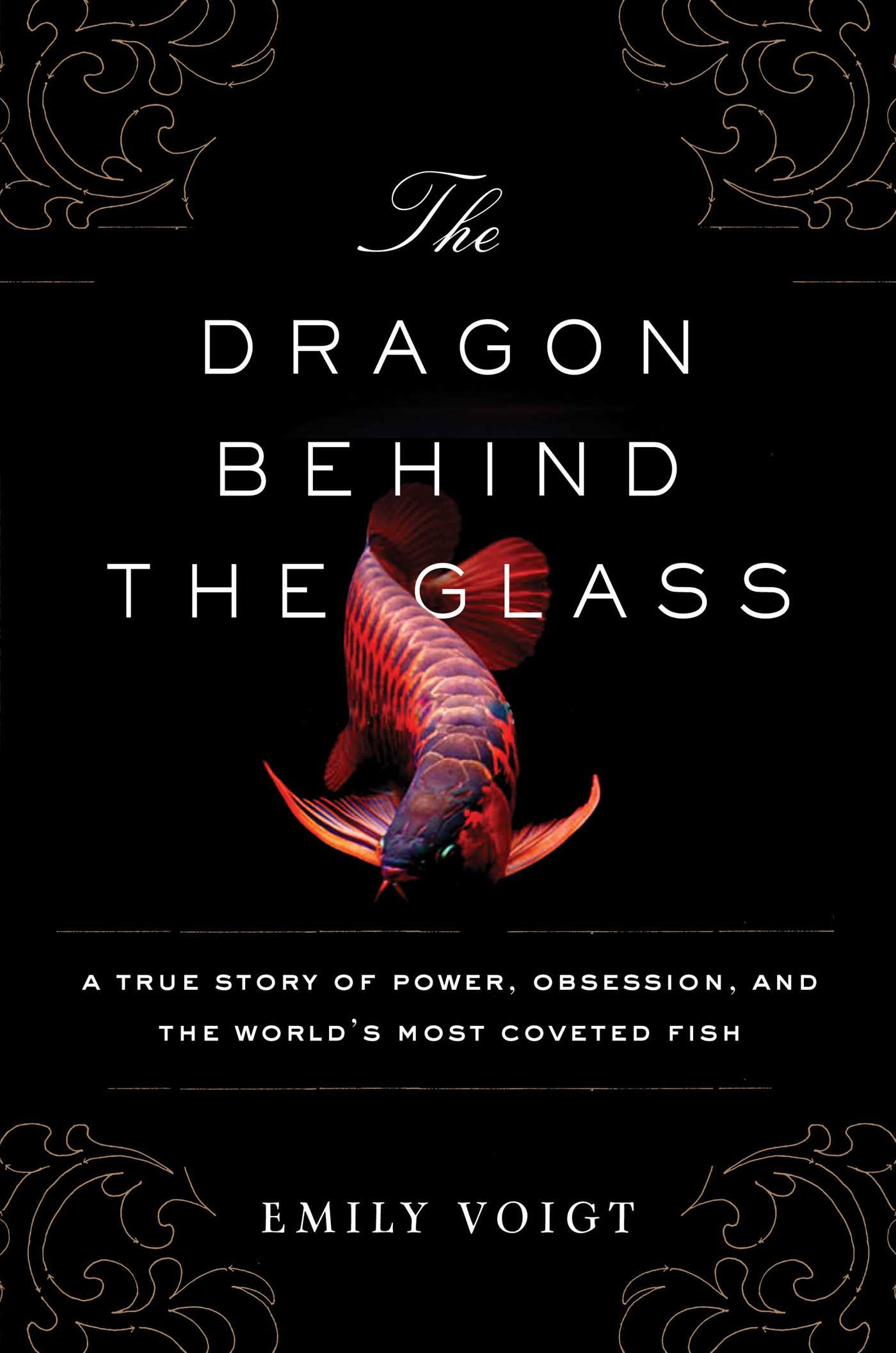The dragon behind the glass 9781451678949 hr