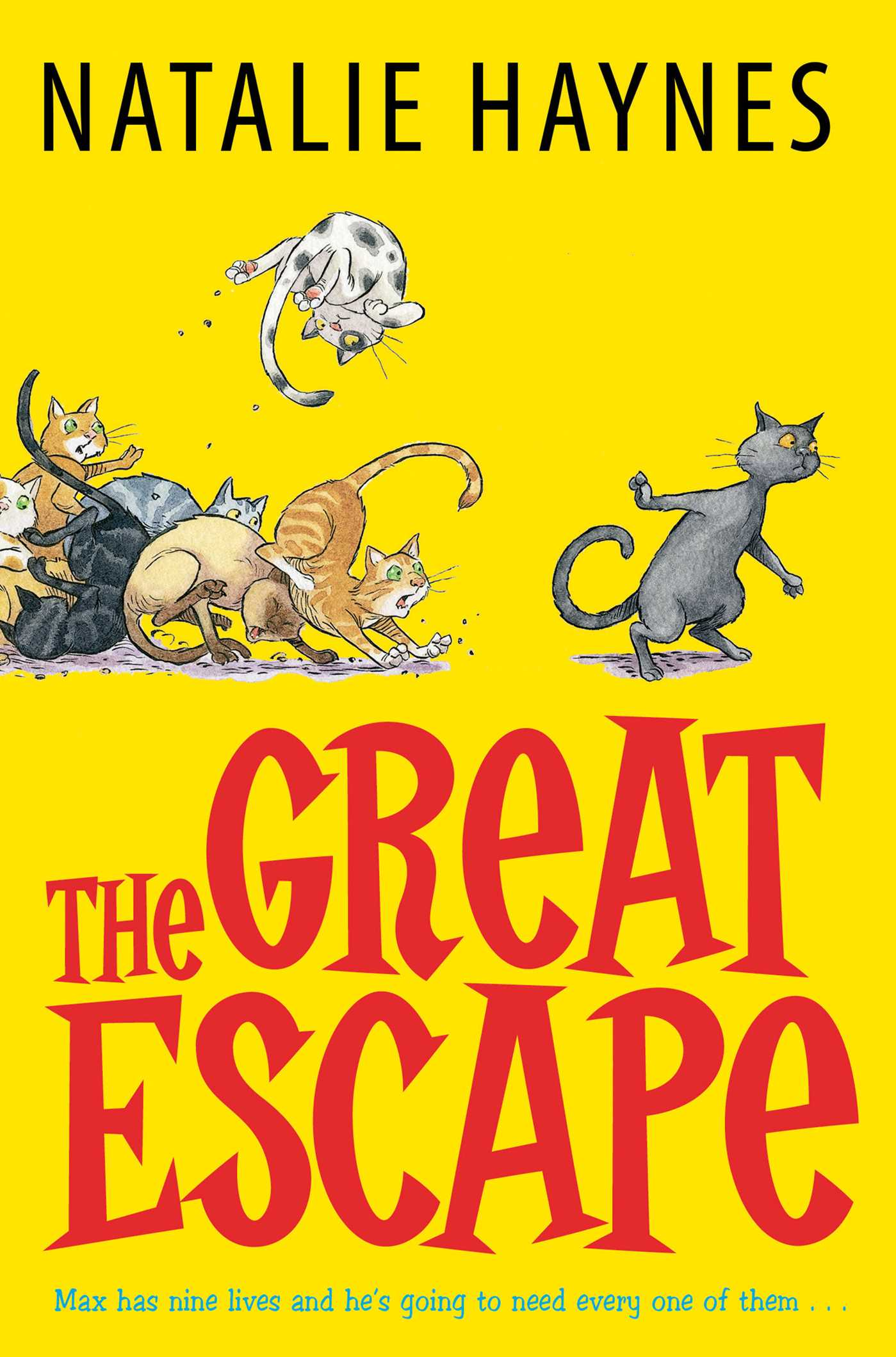the great escape book by natalie haynes official publisher page