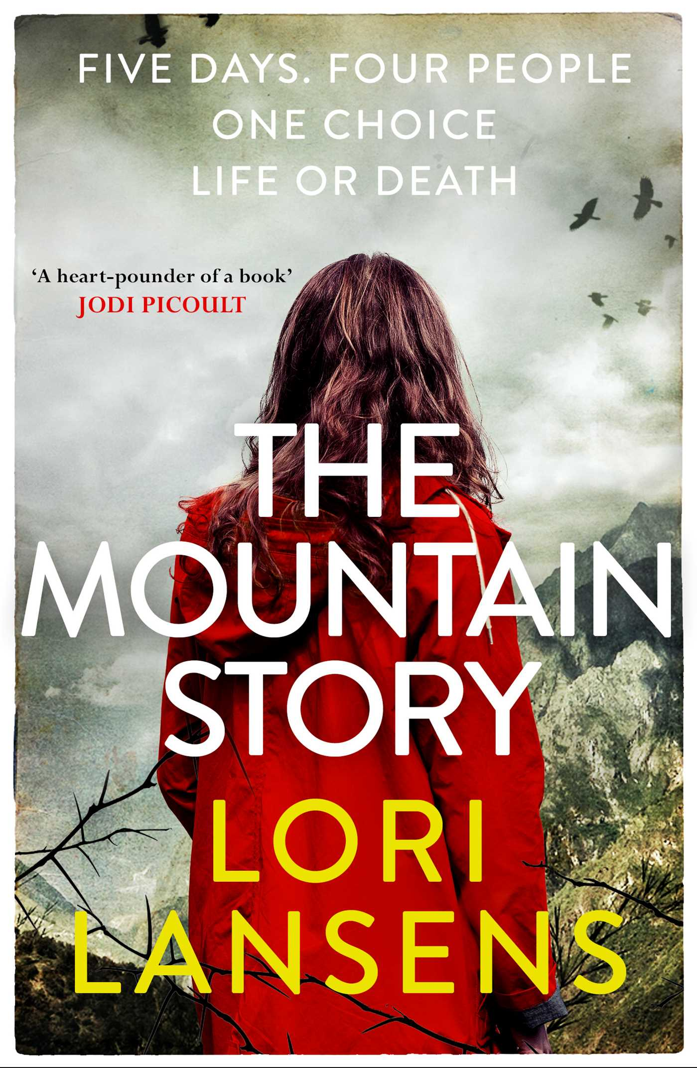 The mountain story 9781471138010 hr