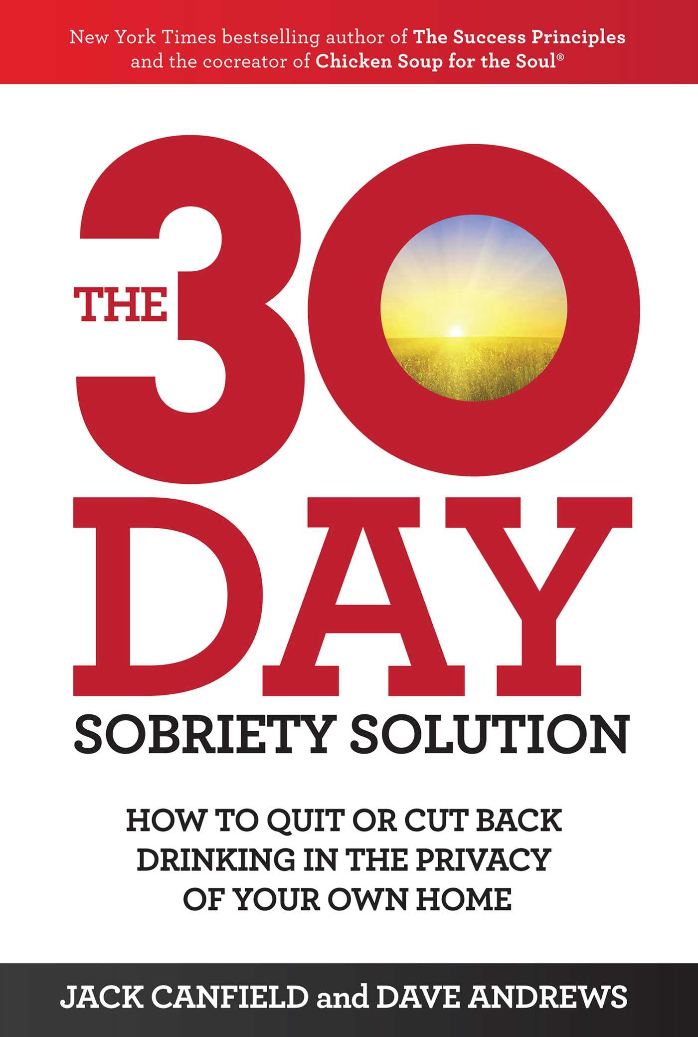 The 30 day sobriety solution 9781471148668 hr