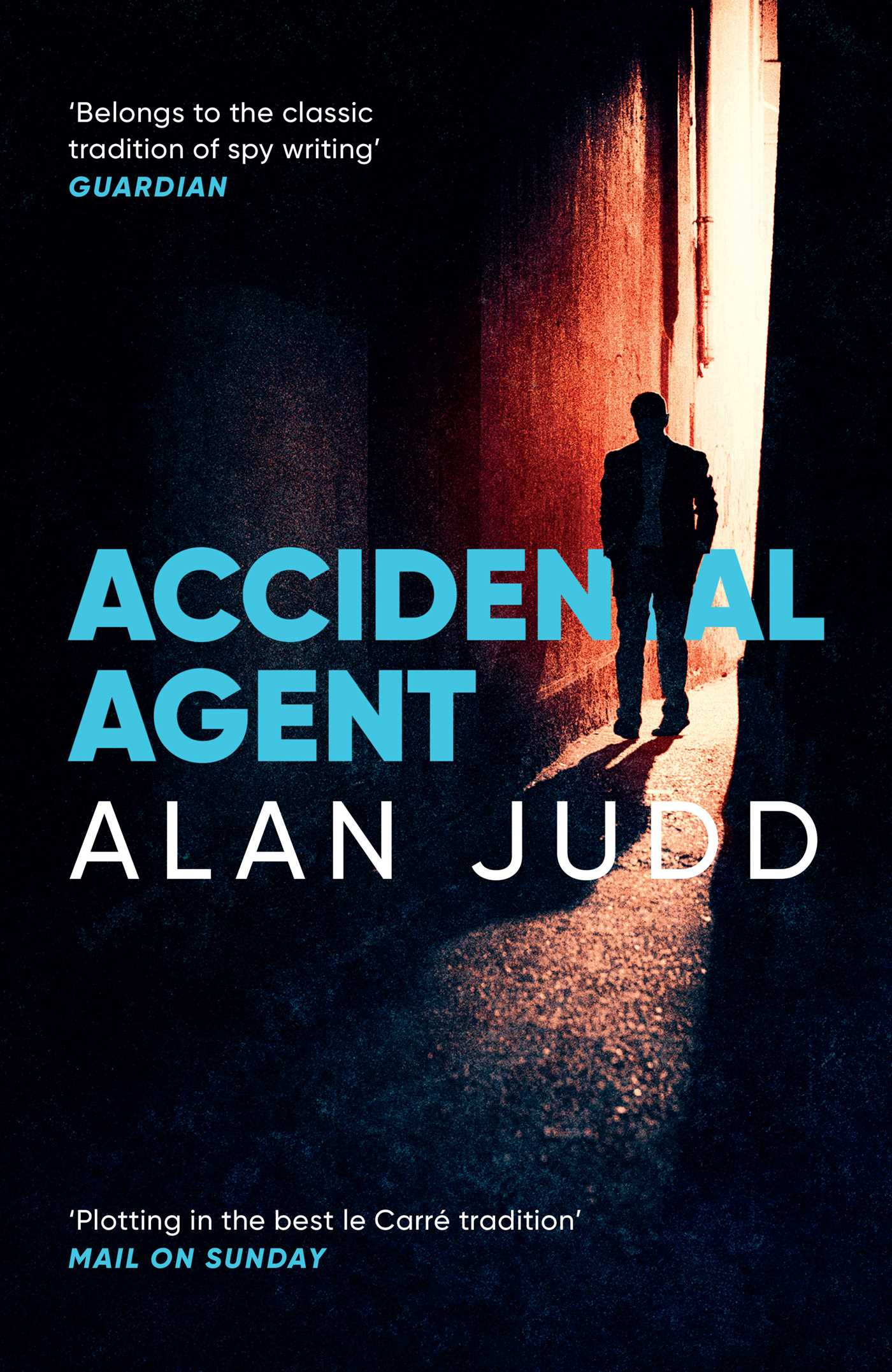 Accidental agent 9781471150678 hr